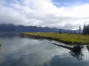 Tonsina Creek